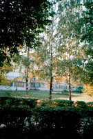 Vladimir State University in autumn