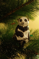 Fir Panda