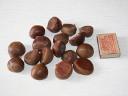Каштан (chestnut) снаружи