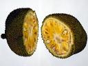 Джекфрут (jackfruit) внутри