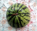 Арбуз (watermelon) жёлтый снаружи