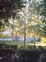 VlSU in Autumn