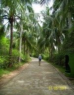 2017.05.31 Walking through an alley of the Monkey Island (Hainan)
