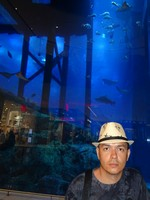 2018.06.01 Like Adriano Celentano :-) with the giant aquarium of the Dubai Mall in the background.