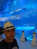 2018.06.01 In the giant glass wall of the Dubai Mall aquarium there are storeys of the trade center reflecting, and inside it there are fishes swimming.