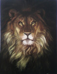 Lion  (canvas of 60 x 80 cm, oil painting; year of 2015)