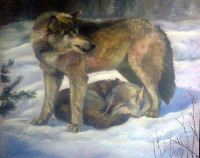 Wolves  (canvas of 120 x 100 cm, oil painting; year of 2015)